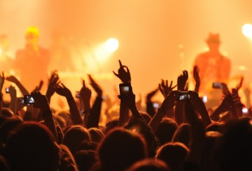 Cheering crowd at a concert